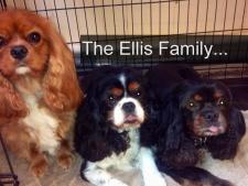 The Ellis Family