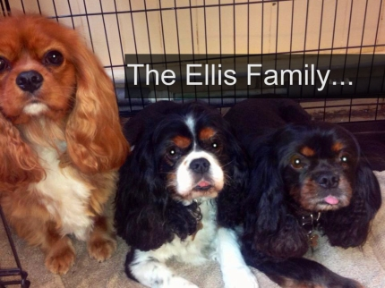 The Ellis Family
